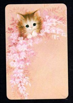 Vintage Swap Card - Gorgeous Kitten & Flowers (BLANK BACK)