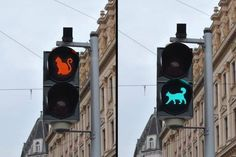 cat crossing sign ♥ How to make #cats live a happy life - subscribe to Ozzi Cat Magazine >> http://OzziCat.com.au/subscribe ♥
