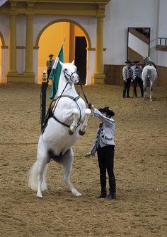 Show på Den Kongelige Andalusiske Rideskole
