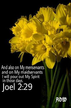 ~ Joel 2:29 ~ His Spirit... in those days