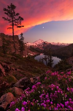 Drenched in Color by Danny Seidman on 500px