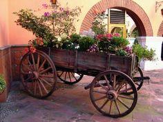 Carreta+en+flor.jpg (400×300)