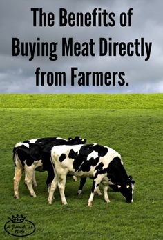 What are the benefits of buying meat from farmers? Knowing how the animal was raised, better quality, better price and more. Support local farmers!