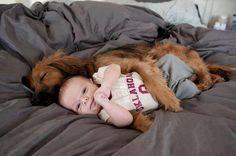 ♥ Puppy cuddles