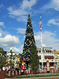 Christmas tree at the entrance of the Magic Kingdom. This tree is huge! It is viewable from across the lake. Could see it from ticketing and transportation.