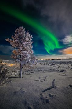 Northern Lights at Selfoss in Iceland. Photo by Pall Jokull.