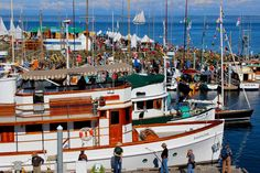 Come to festival pic Port Townsend, Yasmine Galenorn, Lake Pontchartrain, September 9, Wooden Boats, Sailboats, North Shore, Home And Away, Washington State