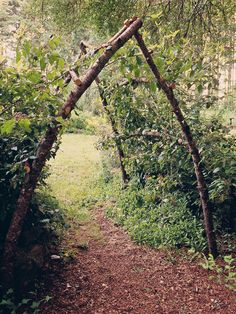 Beautiful garden archway using found wood.