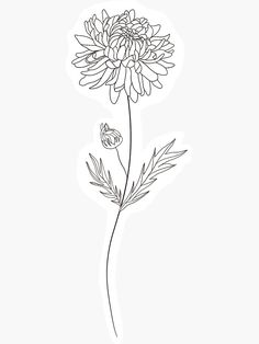 Name Flower Tattoo, Dahlia Tattoo, Daffodil Tattoo, Birth Flower Tattoos, Thumb Tattoos, Bone Tattoos, Fine Line Tattoos, Black Tattoos, Tatoos