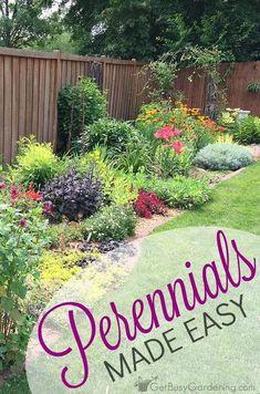 Tips for perennials