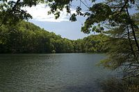 Greenbo Lake State Resort Park  Greenup, KY