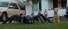 You can transform a few black trash bags into a giant spider that fits on your front porch, or up in a tree. You can also make multiple giant spiders and cluster them across the front and sides of your home.