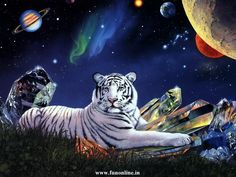 Fantasy Landscape Tiger | cool view of White Tiger in Space