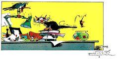 Animaux de compagnie Franquin