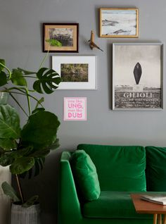 Green velvet sofa and grey walls  in a lovely laid back flat in Malmö, Sweden