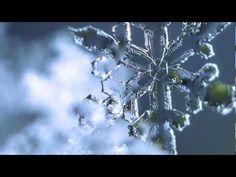 Pretty Little Snowflakes- Jan 2013 - Macro Photography - Nikon D800 - YouTube