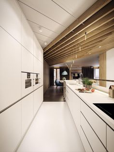 Modern Kitchen Design Ideas, Galley Kitchens Maximizing Small Spaces ...