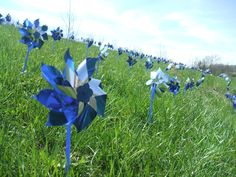 Pinwheels for Prevention!  April is Child Abuse Awareness month