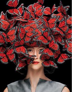 The Butterfly · A White Carousel
