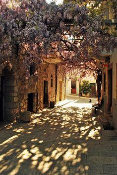 Having flower or vine trestle above some streets or restaurant patios...(Vessa Medieval Village)