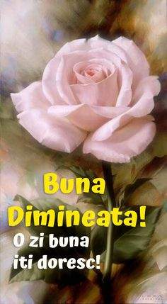 Imagini buni dimineata si o zi frumoasa pentru tine! - BunaDimineataImagini.ro Morning Coffe, Good Morning, Happy Birthday, Motto, Rome, Happy Anniversary, Happy B Day, Bonjour, Urari La Multi Ani