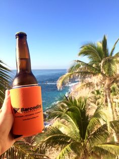 Coozie in Cabo!