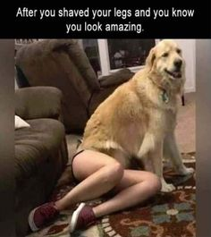 But when it grows back in three days after shaving your legs and start feeling like Wolverine. Visit here for more hilarious memes about life that is so true you can't help but laugh...  #Funny #Pictures #Memes