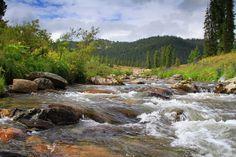 пейзаж, природа, лес, река