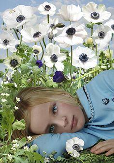 Ruud Van Empel - digital collage