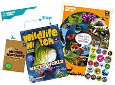 sussex wildlife trust childrens pack - Google Search