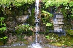 Don't Go Chasing Waterfalls by Kelly Griffith on Capture Wisconsin at the Boerner Botanical Gardens in Hales Corner, WI