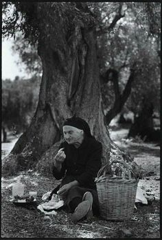 """Lunch in an olive grove.""""A Greek Portfolio"""" Costa Manos/Magnum Photos Greece Pictures, Old Pictures, Old Photos, Vintage Photos, Greece Photography, Old Photography, Documentary Photographers, Famous Photographers, Magnum Photos"""