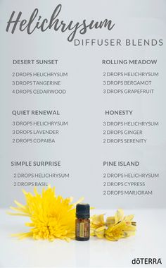 Helichrysum Diffuser Blends