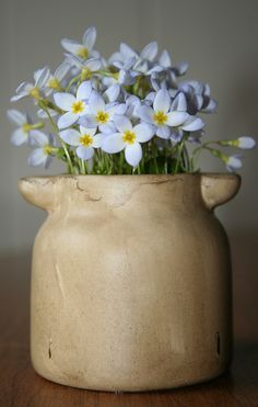 just lovely - container with flowers