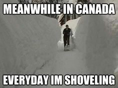 meanwhile in canada memes Canadian Memes, Canadian Things, I Am Canadian, Canadian Winter, Canadian Girls, Canadian Humour, Meanwhile In Canada, Canada Hockey, Canada Eh