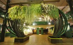 sculpture végétale | Plafond végétal - Folies Végétales