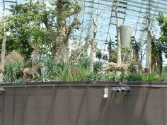 Gardens By The Bay (Singapore) - 2019 All You Need to Know Before You Go (with Photos) - Singapore, Singapore