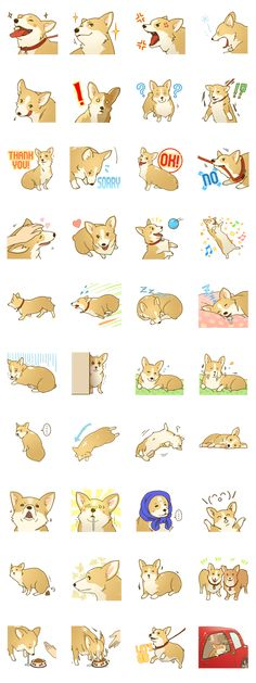 #LINE #Sticker - Developer: ULI || Sticker packet name: MAIRO the Corgi