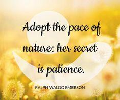Be Patience, Wellness Center, Best Yoga, Preschool Activities, Breathe, Quotes, Outdoor, Quotations, Outdoors