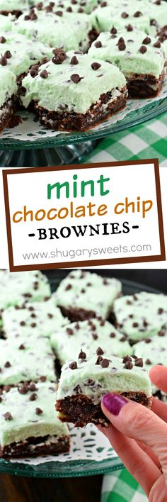 Shugary Sweets Thick and Fudgy Mint Chocolate Chip Brownies Recipe Rich and thick, these fudgy brownies are topped with a sweet mint chocolate chip buttercream frosting! Behold, the Mint Chocolate Chip Brownies recipe of your dreams! Fudgy Brownie Recipe, Chocolate Chip Brownies, Chocolate Chip Recipes, Mint Chocolate Chips, Brownie Recipes, Chocolate Desserts, Fudgy Brownies, Cookie Recipes, Chocolate Muffins