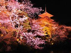 京都:清水寺
