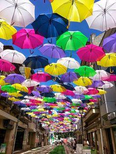 En Agueda Portugal. Cada mes de julio , como parte del arte Águeda festival, cientos de paraguas-sombrilla se cuelgan sobre paseos en las calles de Águeda, un municipio de Portugal. La hermosa tradición comenzó hace sólo unos años