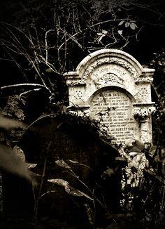 Abney Park Cemetery - London.