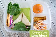Summer Camp Lunchbox   | packed in @EasyLunchboxes
