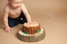 log cake smash