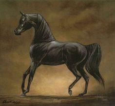 Artist Horse Prints   BLACK STALLION MARE arabian horse art print SHIVAK chivalry