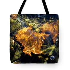 New Art New Photos Pittsburgh Photographer Roberto Clemente Bridge Canvas Prints Tote Bag featuring the photograph Ohio River Fall Leaves by Len-Stanley Yesh