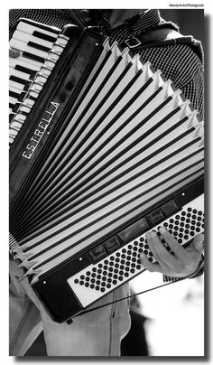 El Acordeon… In the hands of a Latino… Vallenato, Norteñas, Tango, Merengue, etc.