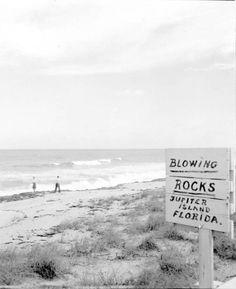 Blowing Rocks Beach Jupiter Florida 1946 Juno Beach Florida, Juno Beach Pier, Moving To Florida, Florida Beaches, Vintage Florida, Old Florida, Vintage Pictures, Old Pictures, Jupiter Photos