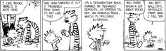 Calvin is a rockhead!